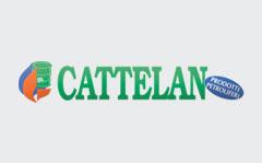 Cattelan